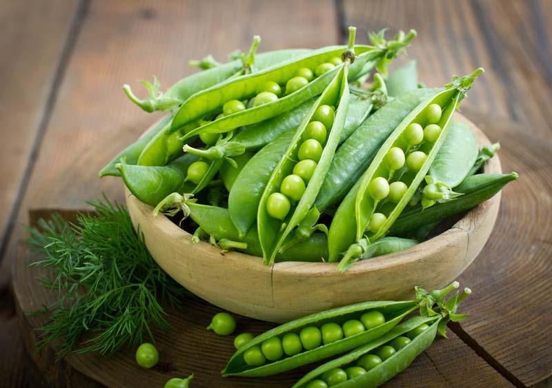 Hülsenfrüchte - Bohnen, Erbsen
